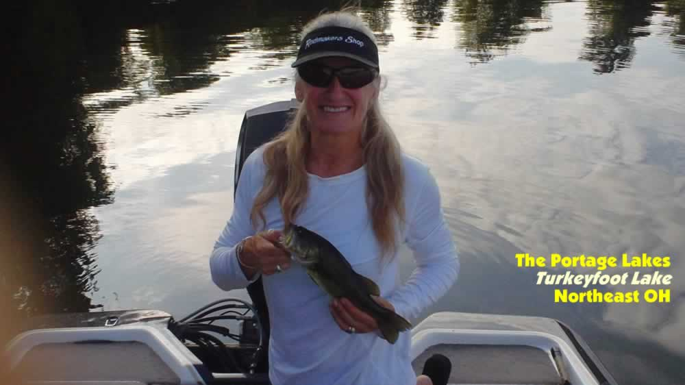 Ohio lake maps fishing information go fish ohio memes for Mosquito lake fishing