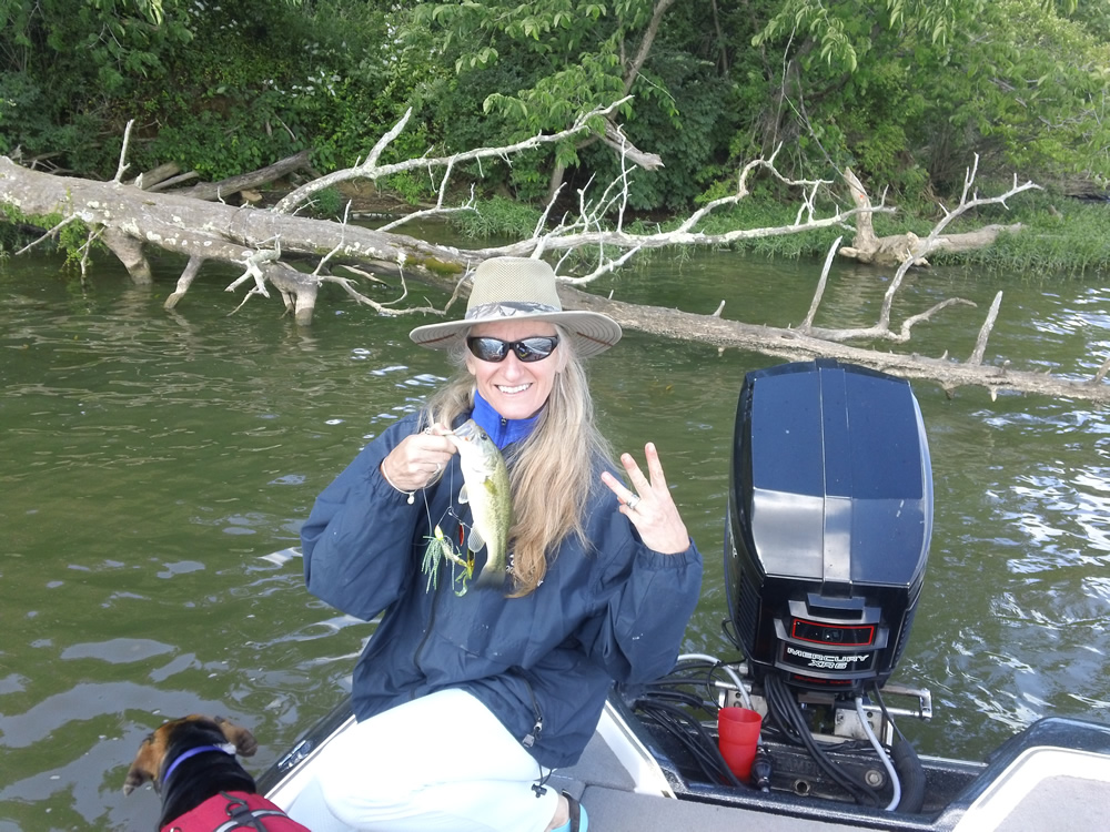 Rocky fork lake fishing map southwest ohio go fish ohio for Ohio dnr fishing license