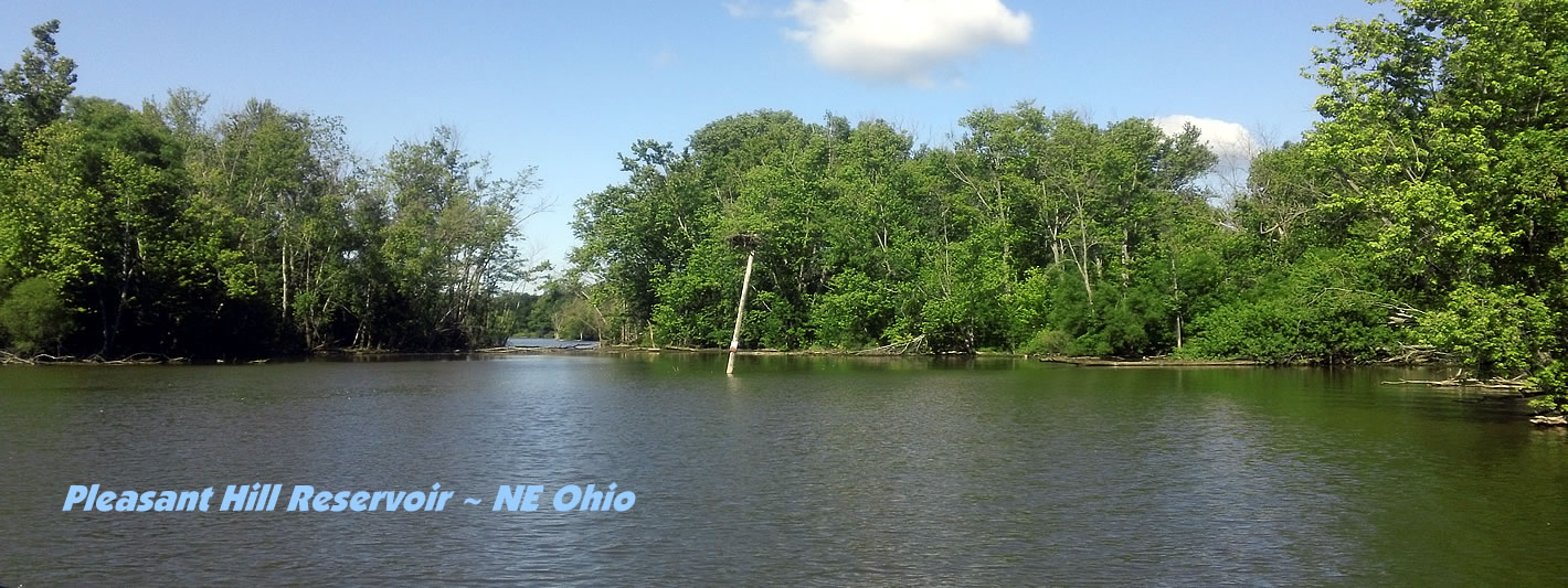 Gofishohio ohio fishing reports lake maps info for Ohio fishing report 2017