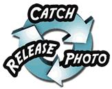 Catch > Photo > Release - Better Half Tour