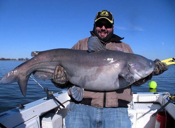 Circle Hooks for Catfishing - Tim Doc Lange