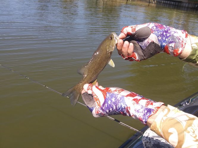 Lake Milton Bass Fishing