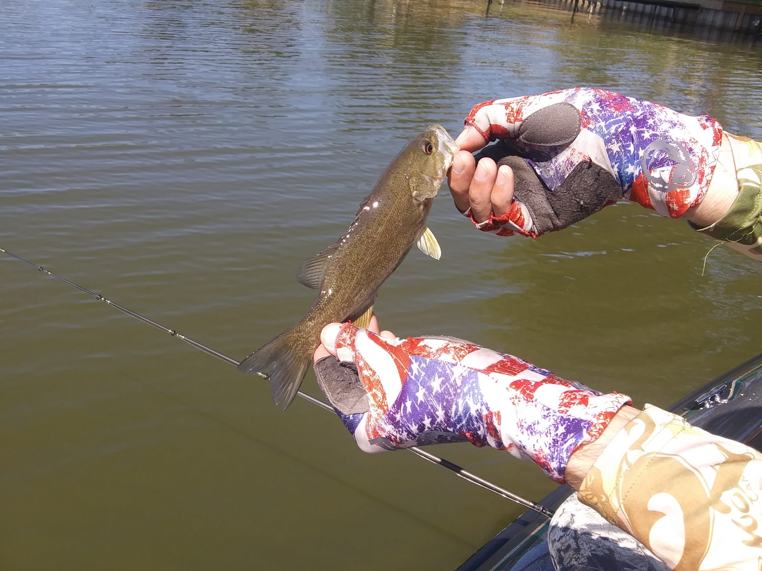 Read more about the article Lake Milton Bass Fishing Report